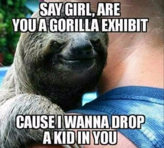 This sloth is big into non-consent